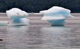 близнец айсберга Стоковое Изображение RF