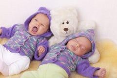 близнец сестер младенца идентичный Стоковое Изображение RF