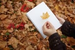 Блокнот в руках на предпосылке листьев осени Стоковые Изображения RF