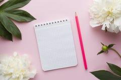 Блокнот для пиона белых цветков текста на предпосылке пастельного пинка Стоковое Фото