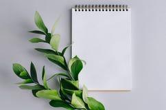 Блокнот с зеленой ветвью с листьями на серой предпосылке стоковое изображение rf
