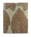 Блокнот шелковицы бумажный Стоковое фото RF