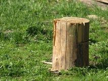 блок деревянный стоковое фото rf