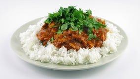 Блюдо карри и риса при добавленные зеленые цвета акции видеоматериалы