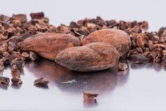 Бобы кака шоколада изолированные на белой предпосылке Стоковая Фотография RF