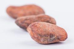 Бобы кака шоколада изолированные на белой предпосылке Стоковое Изображение
