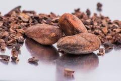 Бобы кака шоколада изолированные на белой предпосылке Стоковое фото RF