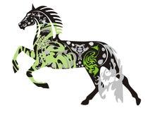 Богато украшенная темная лошадка в скачке Стоковое Фото