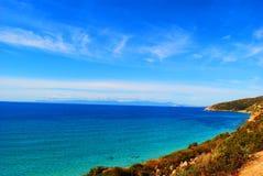 Цветы Сардинии Стоковое Фото