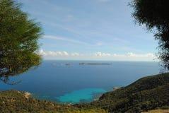 Цветы Сардинии Стоковые Фото