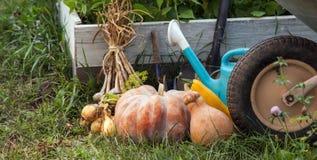 Богатый сбор в саде высоких кроватей и Pu садовых инструментов Стоковая Фотография RF