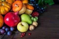 Богатый сбор различных плодоовощей Стоковое Изображение