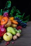 Богатый сбор различных фруктов и овощей Стоковые Фотографии RF