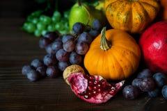 Богатый сбор различных фруктов и овощей Стоковое фото RF