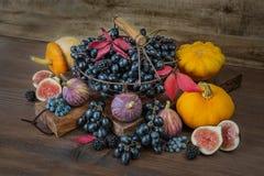 Богатый сбор различных фруктов и овощей Стоковые Изображения