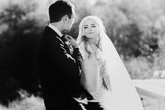 Богачи холят и трава стены предпосылки huggingoutdoor невесты греет a Стоковая Фотография RF