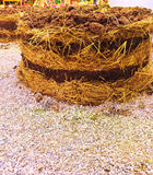 богачи mulch органические Стоковые Фотографии RF