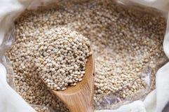 Богачи Quinua в питательных веществах Стоковая Фотография RF
