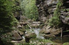 богемское elbsandsteingebirge Швейцария Стоковое фото RF