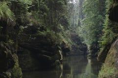 богемское elbsandsteingebirge Швейцария Стоковая Фотография