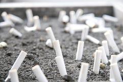 бодает сигарету Стоковая Фотография RF