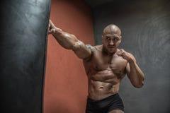 Боевые искусства бойца смешанные тренируя в спортзале стоковое фото rf