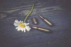 Боеприпасы и стоцвет Стоковые Изображения RF