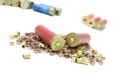 Боеприпасы для охотиться в одичалом Стоковая Фотография RF