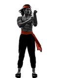 Боец боевых искусств видеоигр Manga Стоковое Фото