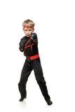 Боец боевых искусств Стоковые Фотографии RF