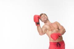 Боец боксера в красных перчатках бокса Стоковое фото RF