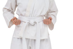 Боец выполняя позицию карате Стоковая Фотография RF