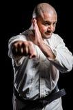 Боец выполняя позицию карате Стоковое Фото