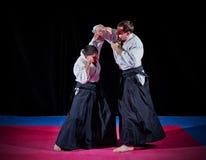 2 бойца боевых искусств Стоковое Изображение RF