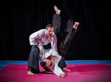 2 бойца боевых искусств Стоковая Фотография RF
