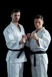 2 бойца карате выполняя позицию карате Стоковая Фотография RF
