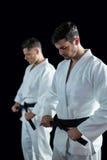 2 бойца карате выполняя позицию карате Стоковое Изображение