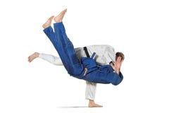 2 бойца judokas воюя людей на белизне Стоковые Фото