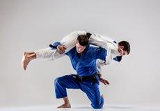 2 бойца judokas воюя людей Стоковые Изображения