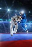 2 бойца kudo воюют на грандиозной арене Стоковое Изображение