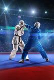 2 бойца kudo воюют на грандиозной арене Стоковые Фото