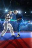 2 бойца kudo воюют на грандиозной арене Стоковые Изображения RF