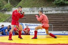 Бойцы самбо Стоковое Изображение