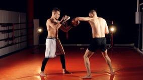 Бойцы Brutall тренируя в спортивном клубе 4K сток-видео