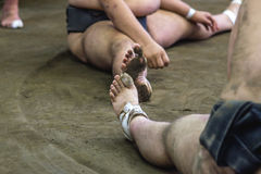 Бойцы Sumo Стоковая Фотография