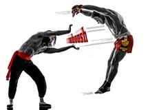 Бой 2 бойцов боевых искусств видеоигр manga Стоковое Изображение