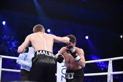 Бой бокса ранжировки в дворце спорта Стоковые Фото
