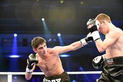 Бой бокса ранжировки в дворце спорта Стоковая Фотография RF