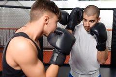 Бой боксеров в sparring Стоковое Изображение