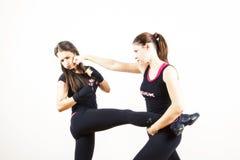 Бой женщин Стоковая Фотография RF